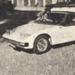 Самодельный легковой автомобиль Золотой лист.